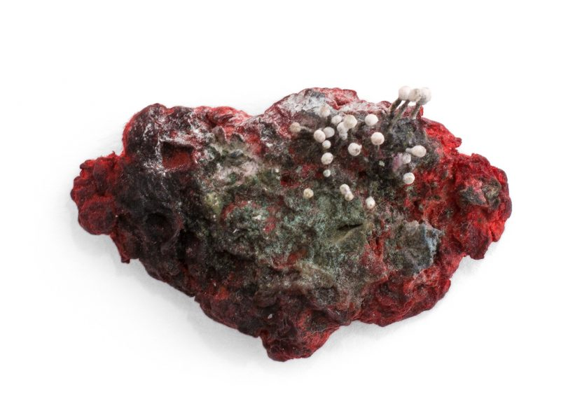 Mycellium cardinalis pm., 2016, pin; papier maché, natural pigments and fibres, shibuichi